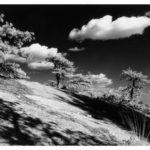 Red Rock Summit © Photography by David Piemonte